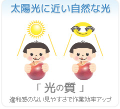 太陽光に近い自然な光【光の質】